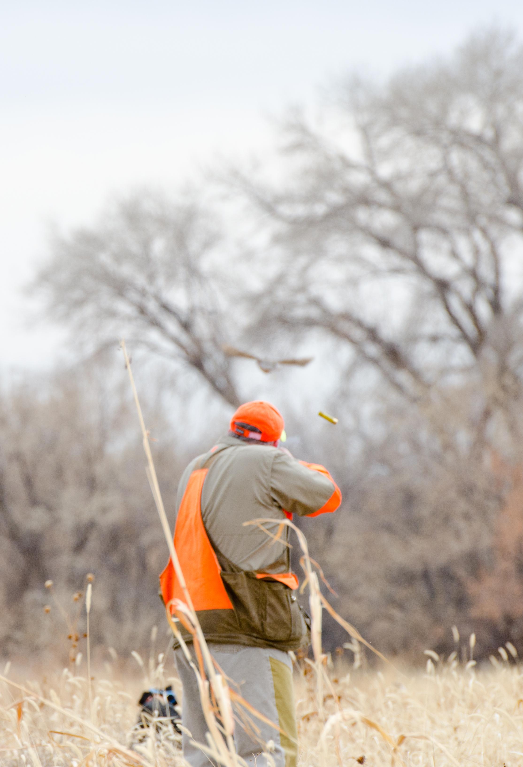 Utah Upland Bird Hunting