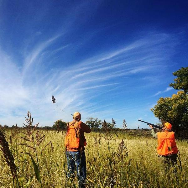 Corporate Bird Hunting in Utah